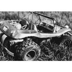 Bauplan Buggy LSM 601