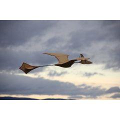 Bauplan-Set Depronodon